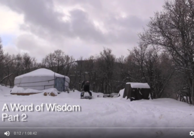 A Word of Wisdom – Part 2 – Traditions stronger than doctrine